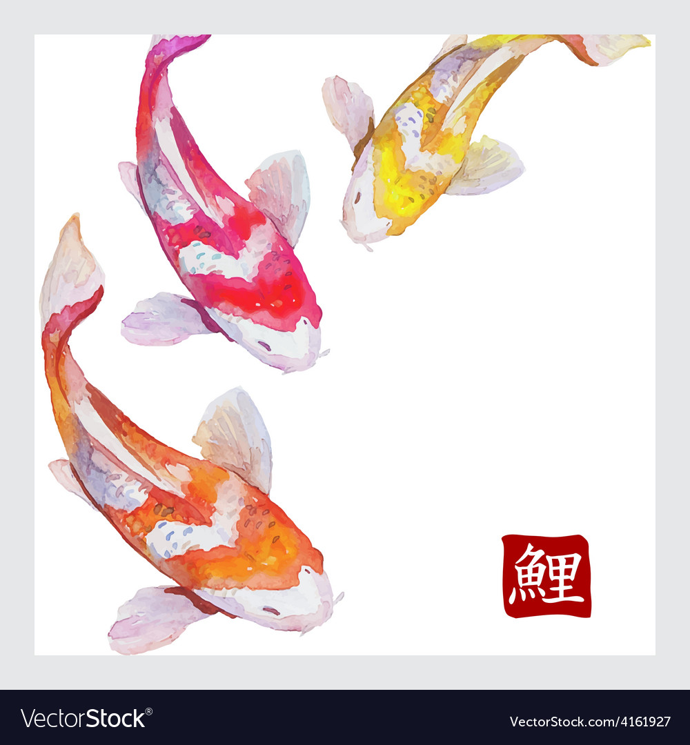 Japanese watercolor carps koi swimming vector | Price: 1 Credit (USD $1)