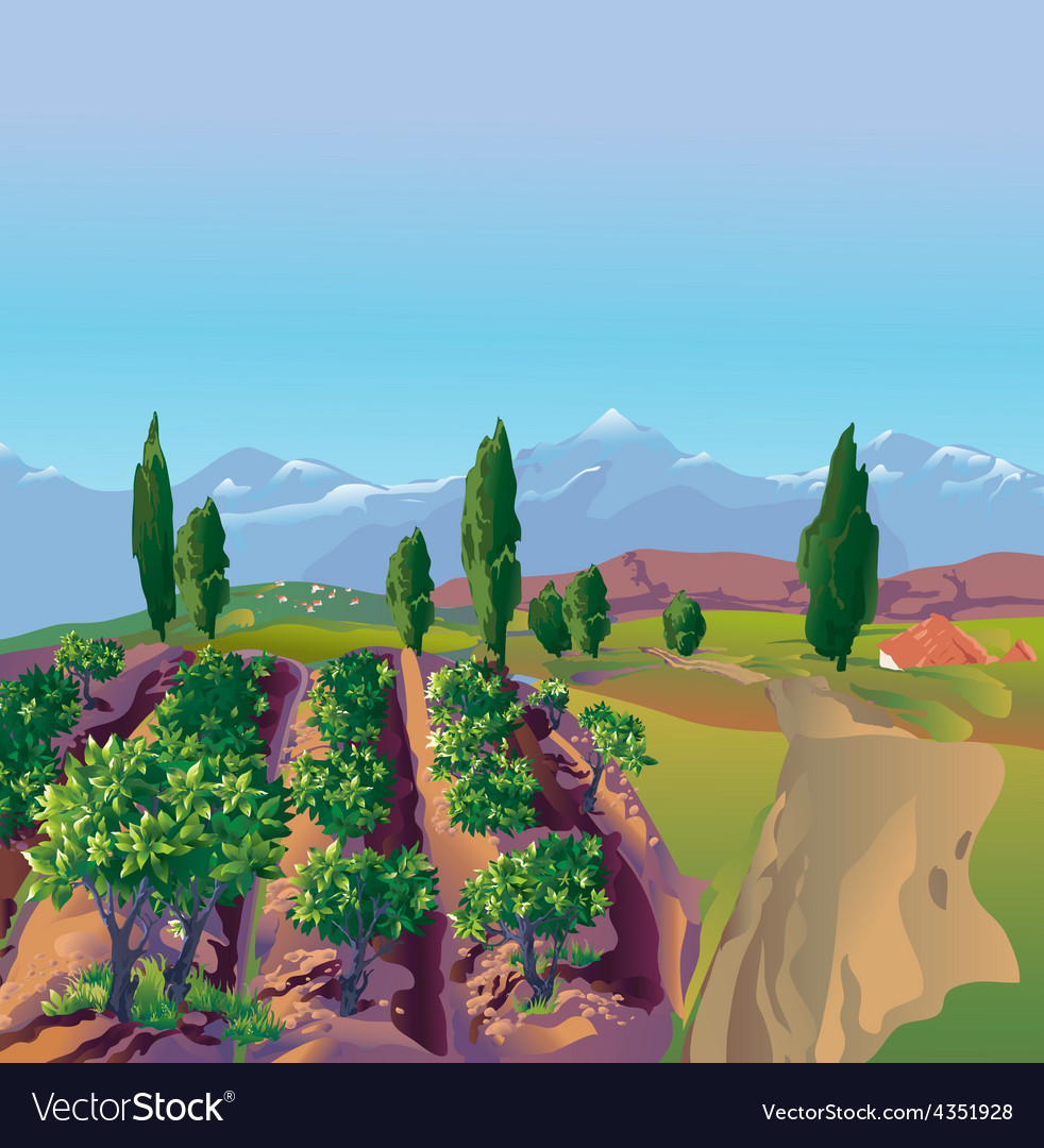 Plantation mountains vector | Price: 5 Credit (USD $5)