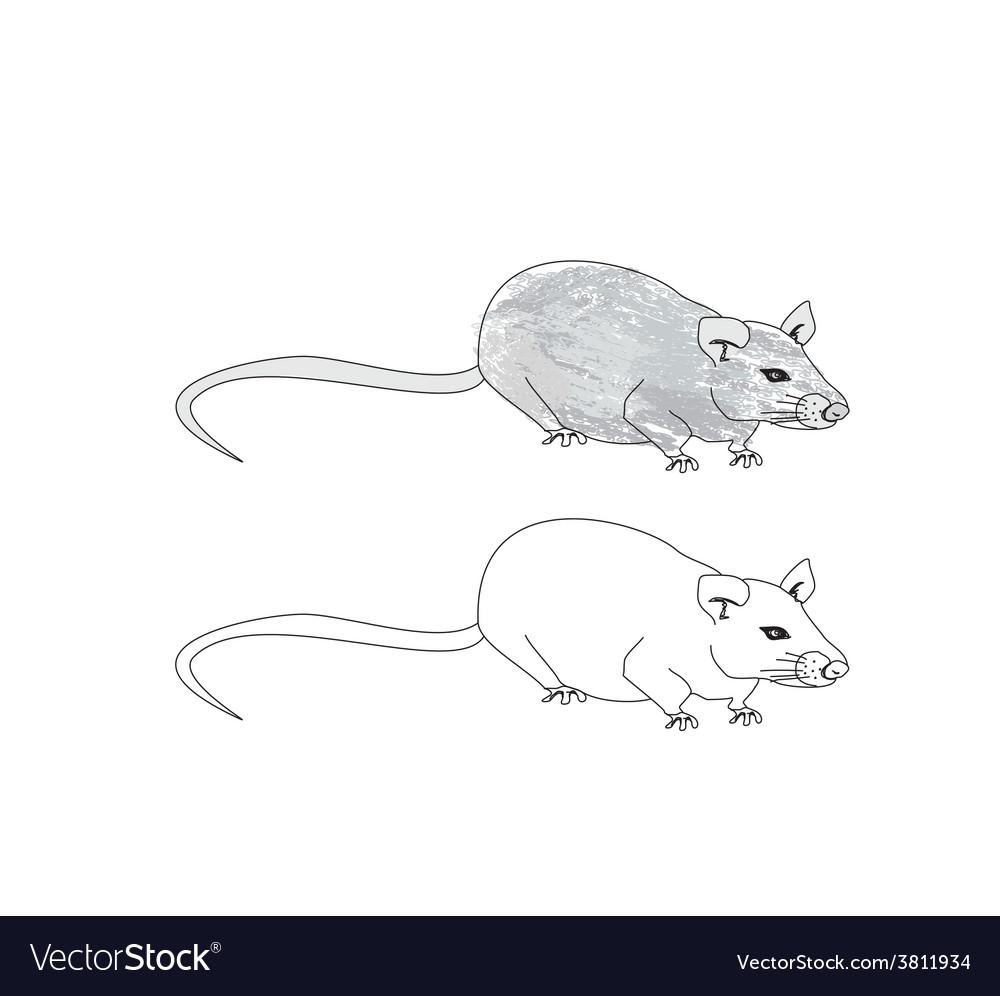 Cartoon rat doodle vector | Price: 1 Credit (USD $1)