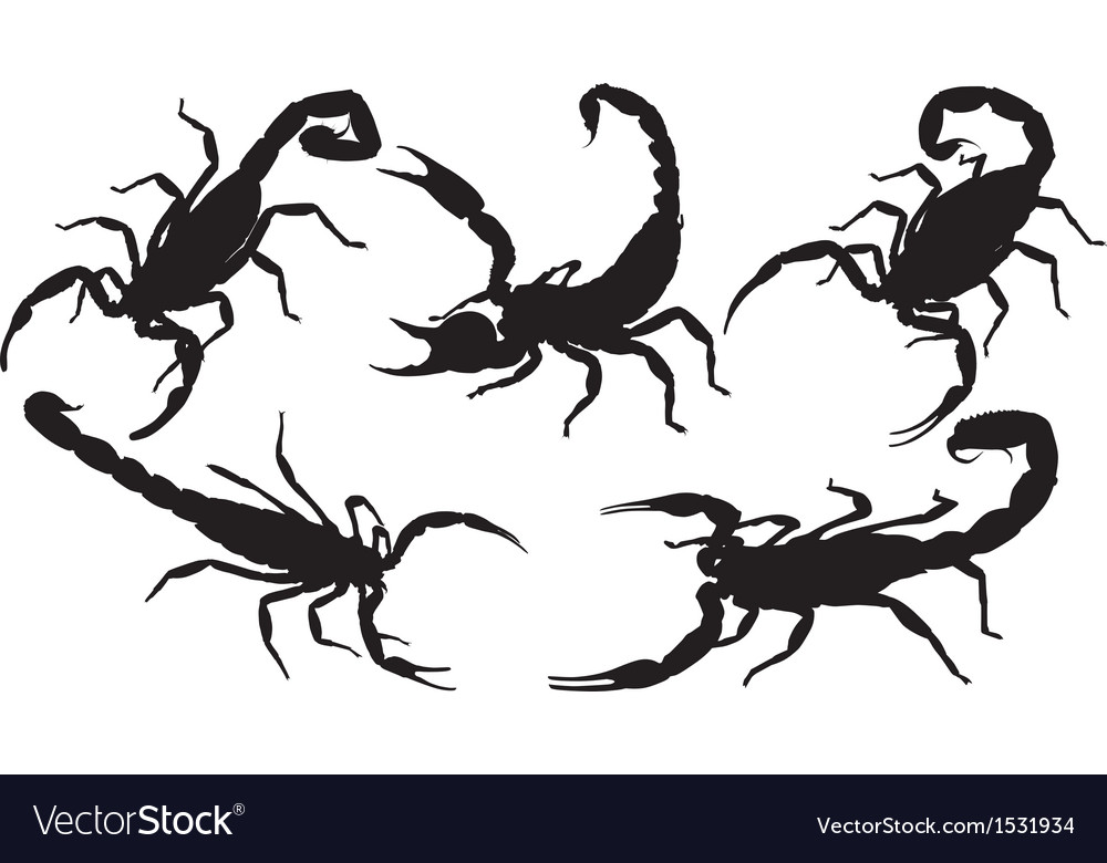 Scorpion silhouette vector | Price: 1 Credit (USD $1)