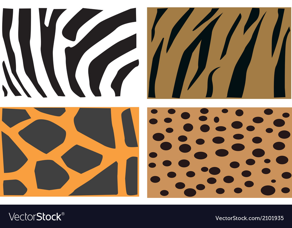 Animal fur patter vector | Price: 1 Credit (USD $1)