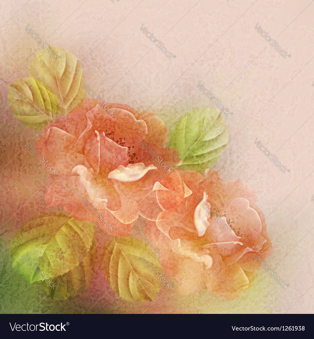 Textured romantic background with roses and leaves vector | Price: 1 Credit (USD $1)