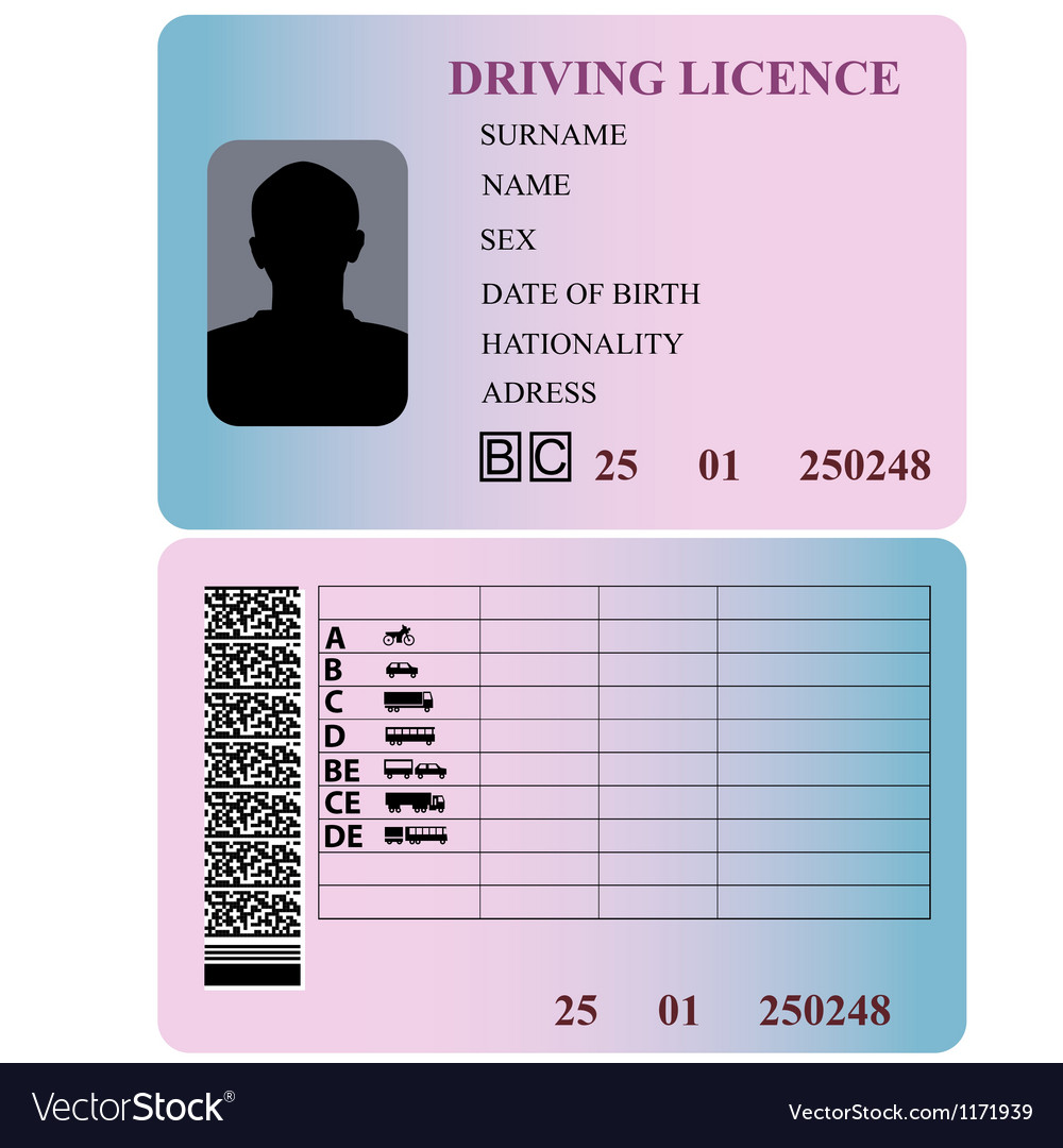 Driving license vector | Price: 1 Credit (USD $1)
