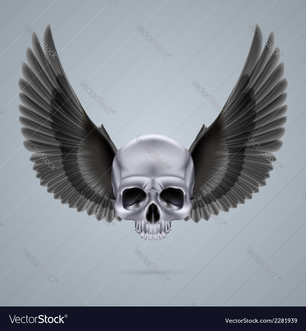 Metal chrome skull with two wings vector | Price: 1 Credit (USD $1)