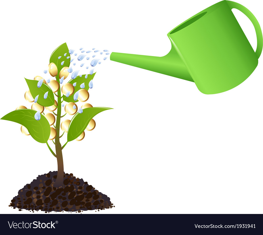 Money plant with watering can vector | Price: 1 Credit (USD $1)