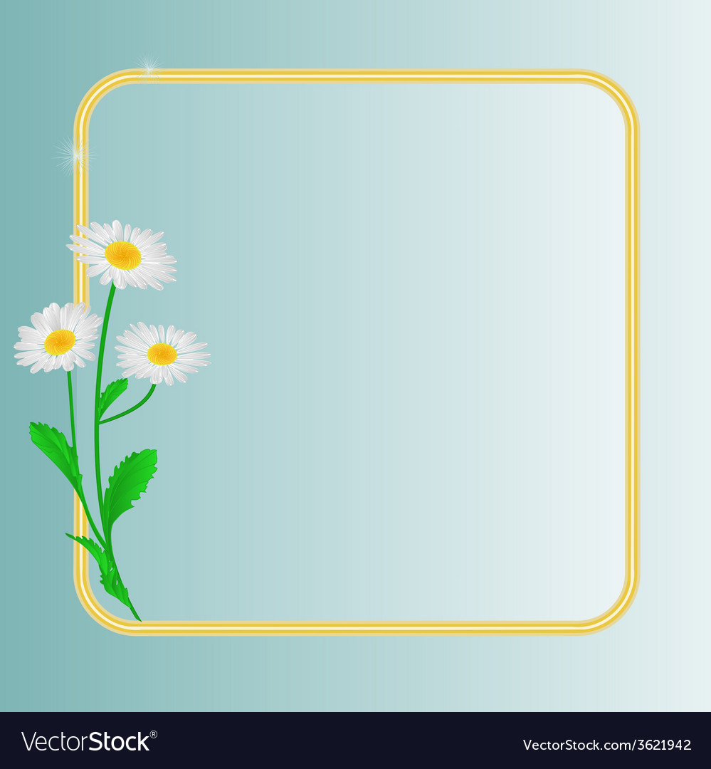 Daisy spring flower blue background vector | Price: 1 Credit (USD $1)