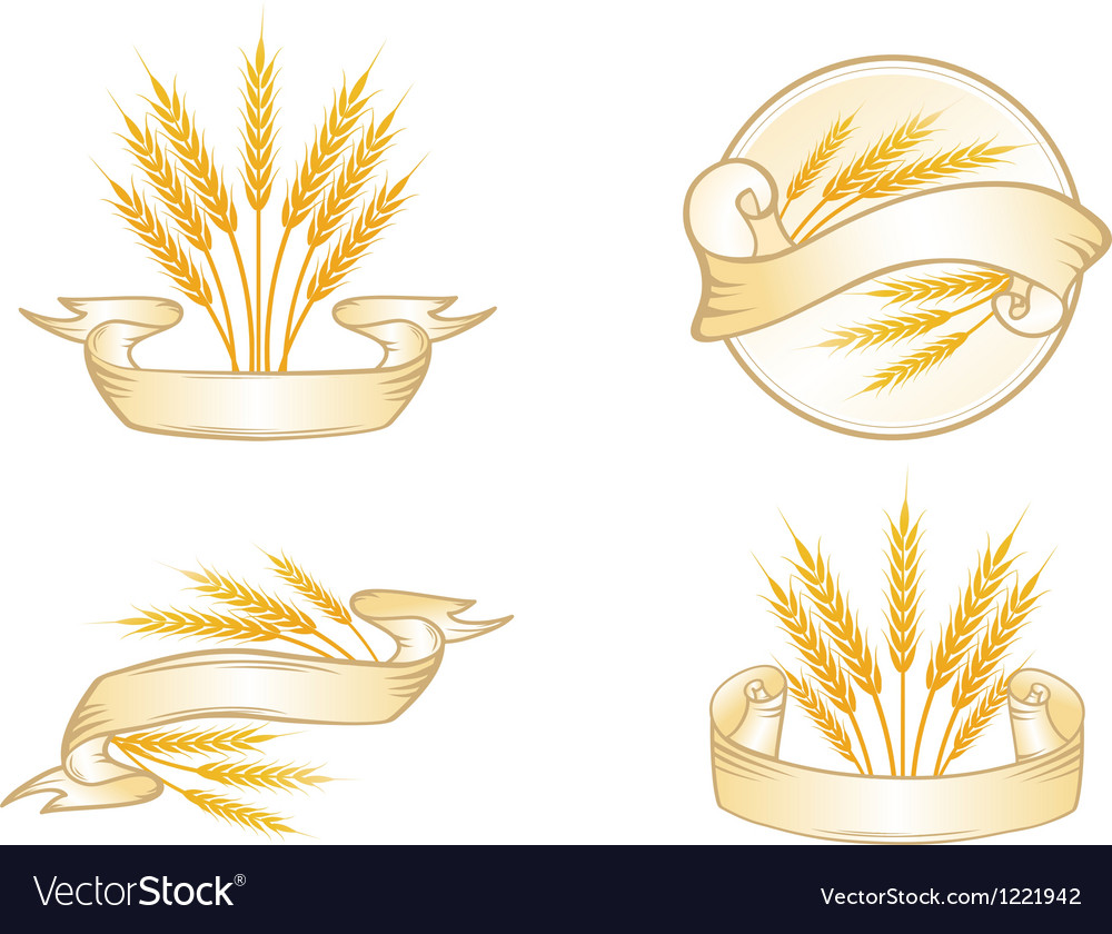Wheat label collection vector | Price: 1 Credit (USD $1)