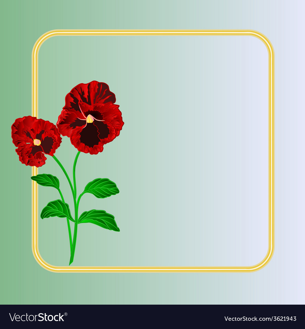 Pansies spring flowers frame place for text vector | Price: 1 Credit (USD $1)
