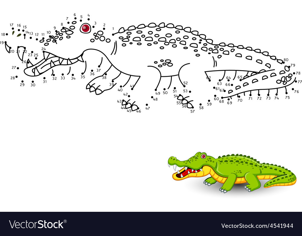 Crocodile connect the dots and color vector | Price: 1 Credit (USD $1)