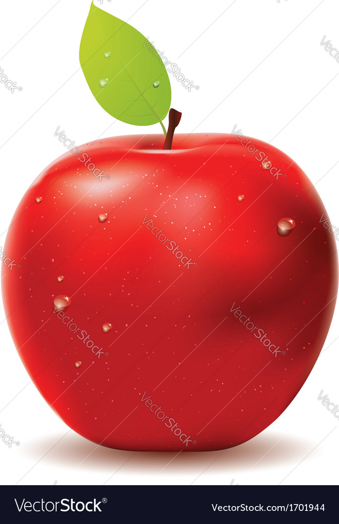 Fresh red apple vector | Price: 1 Credit (USD $1)