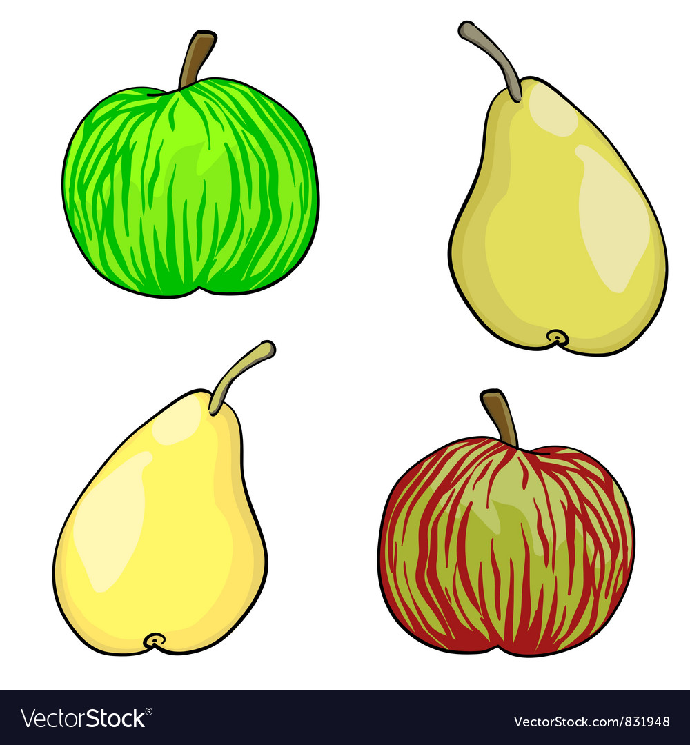 Apple and pear fruit set of vector | Price: 1 Credit (USD $1)