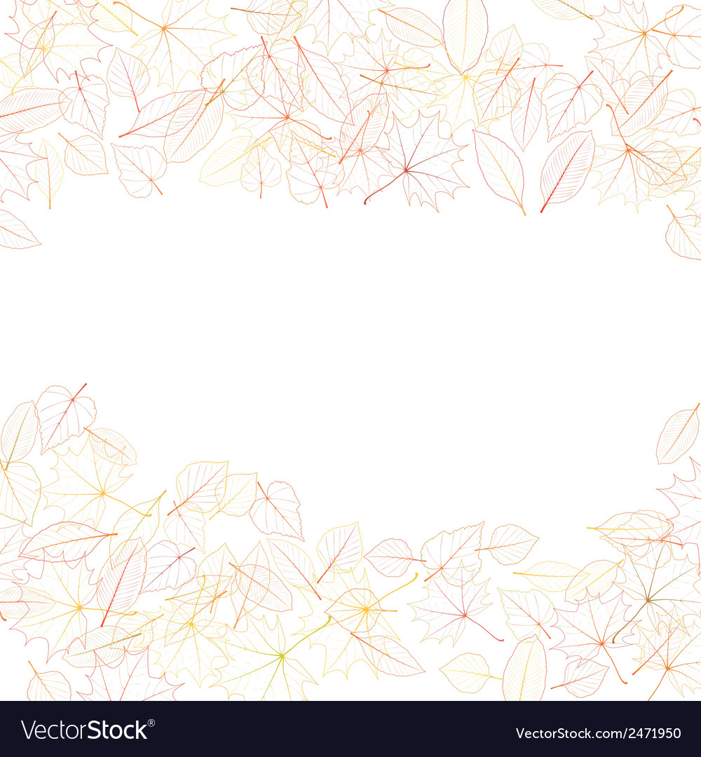 Autumn leaves on white background plus eps10 vector | Price: 1 Credit (USD $1)