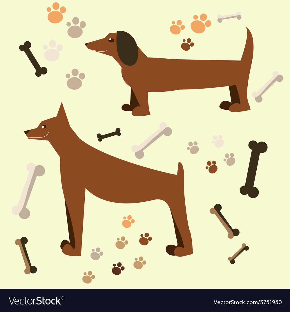 Flat design of the dog doberman and dachshund vector | Price: 1 Credit (USD $1)