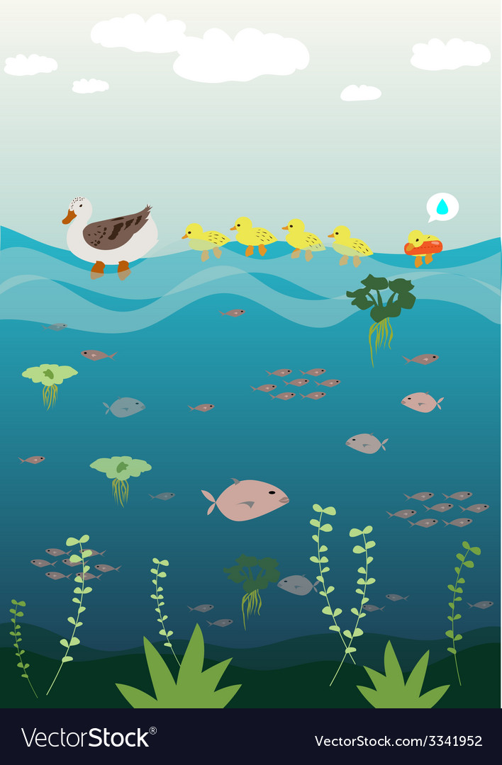 Mother duck teach her baby swimming vector | Price: 1 Credit (USD $1)