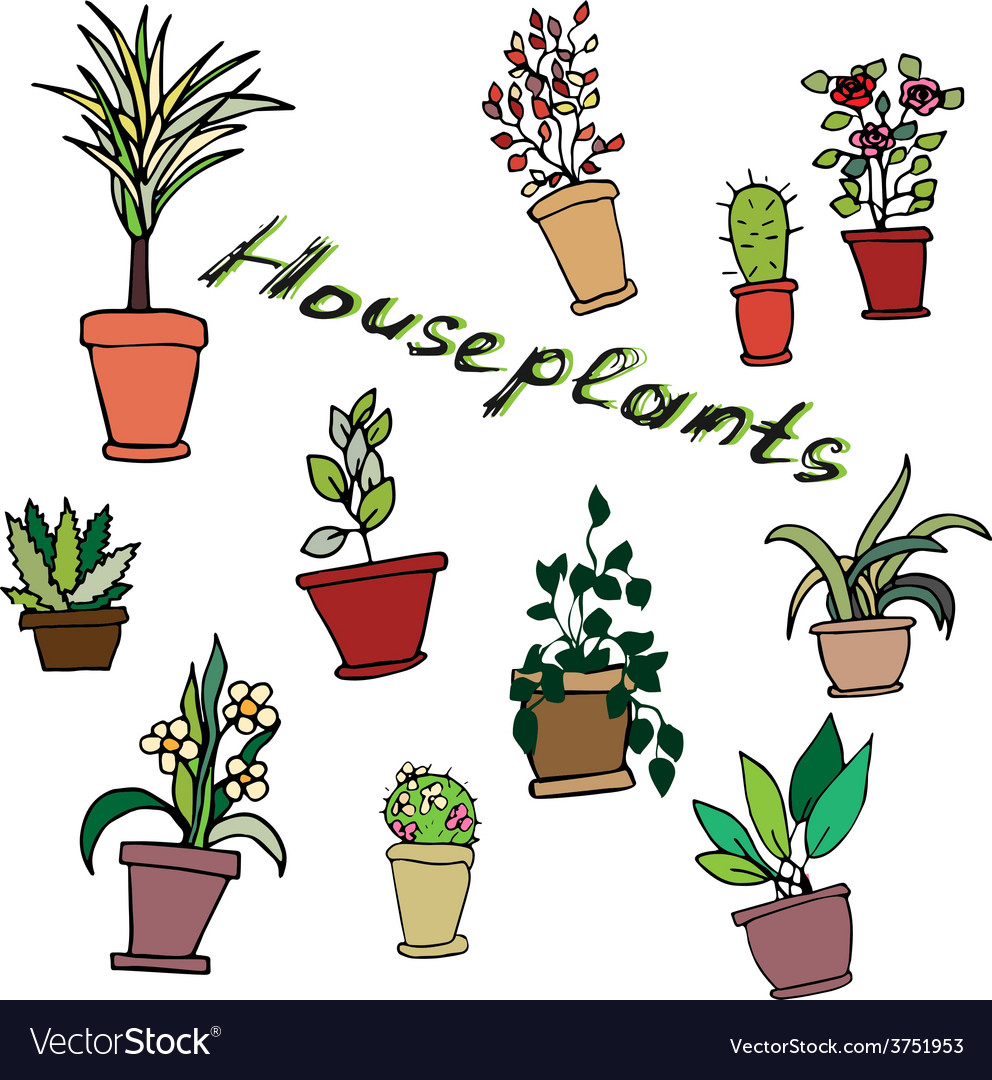 Bright set of house plants in pots with an inscrip vector | Price: 1 Credit (USD $1)