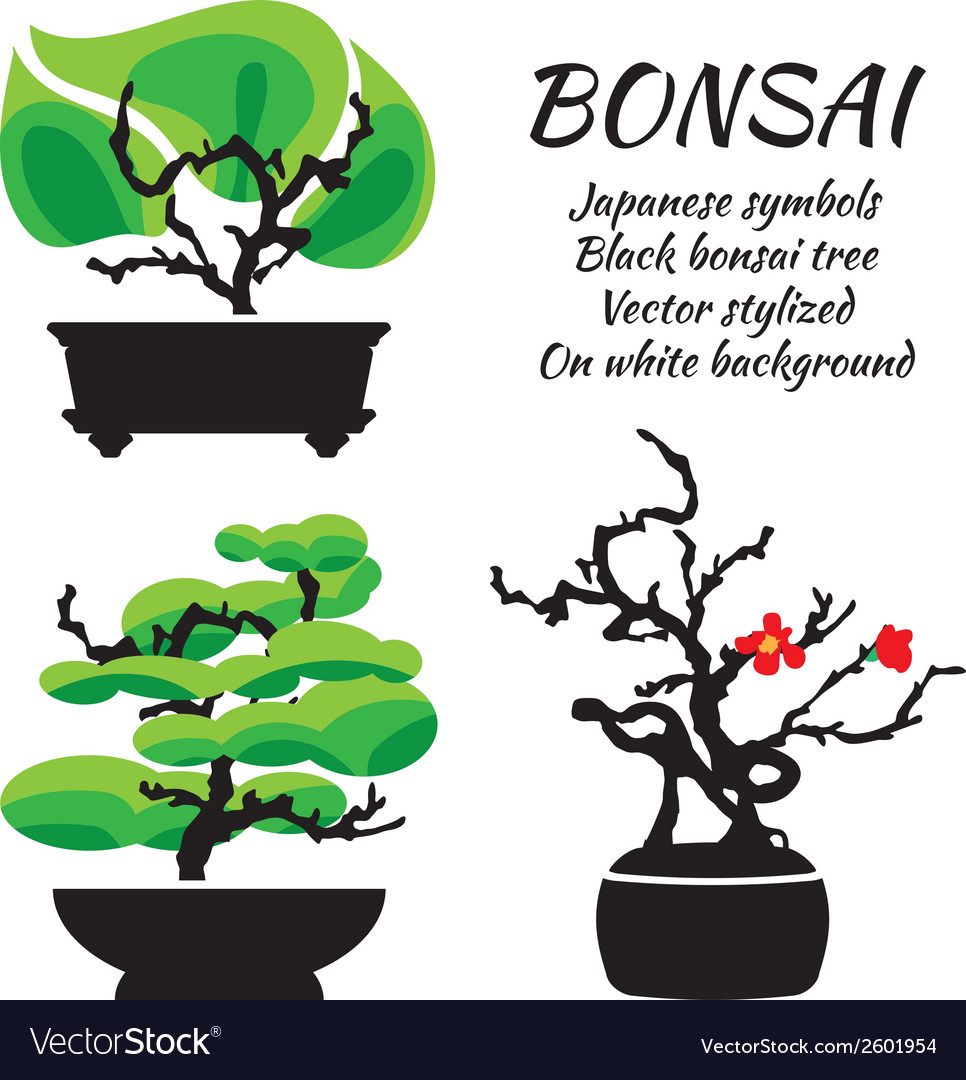 Bonsai set on a white background vector | Price: 1 Credit (USD $1)