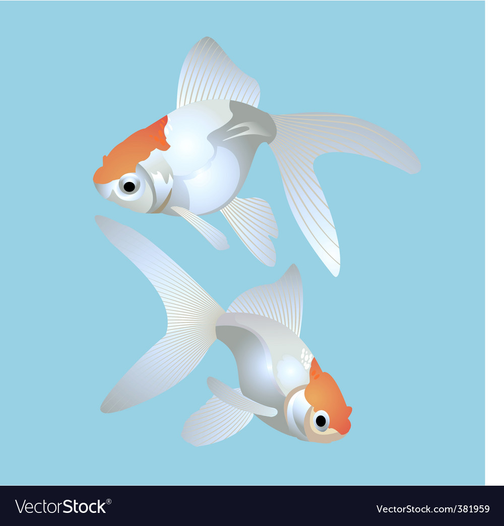 Golden fish vector | Price: 1 Credit (USD $1)