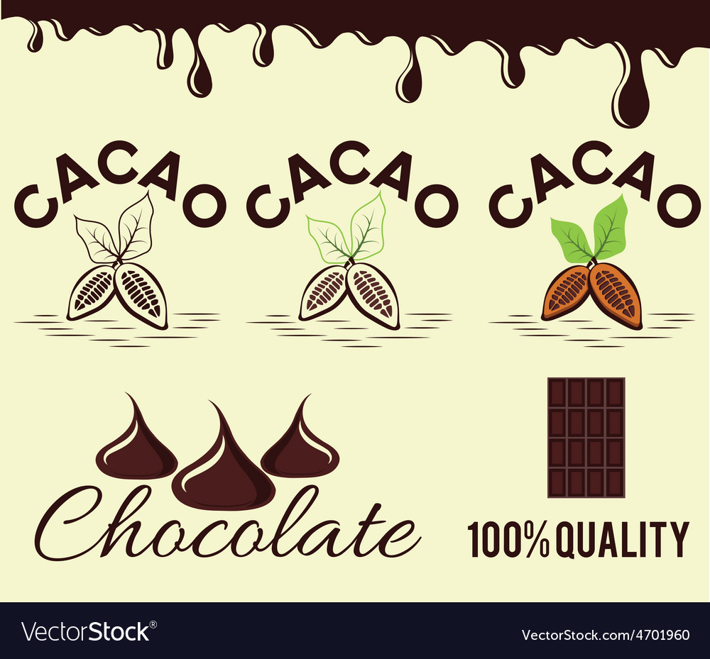 Set of cacao beans and chocolate vector | Price: 1 Credit (USD $1)