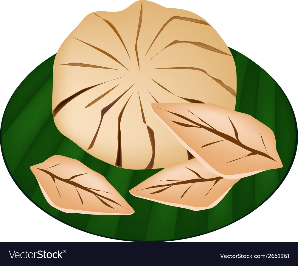 Sweet ripe santol fruit on a green banana leaf vector | Price: 1 Credit (USD $1)