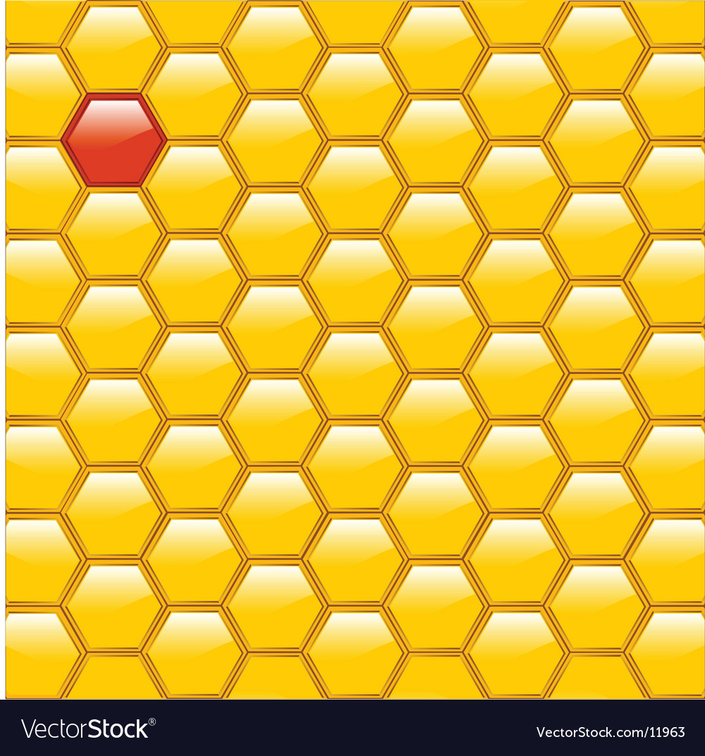 Honeycomb diversity vector | Price: 1 Credit (USD $1)