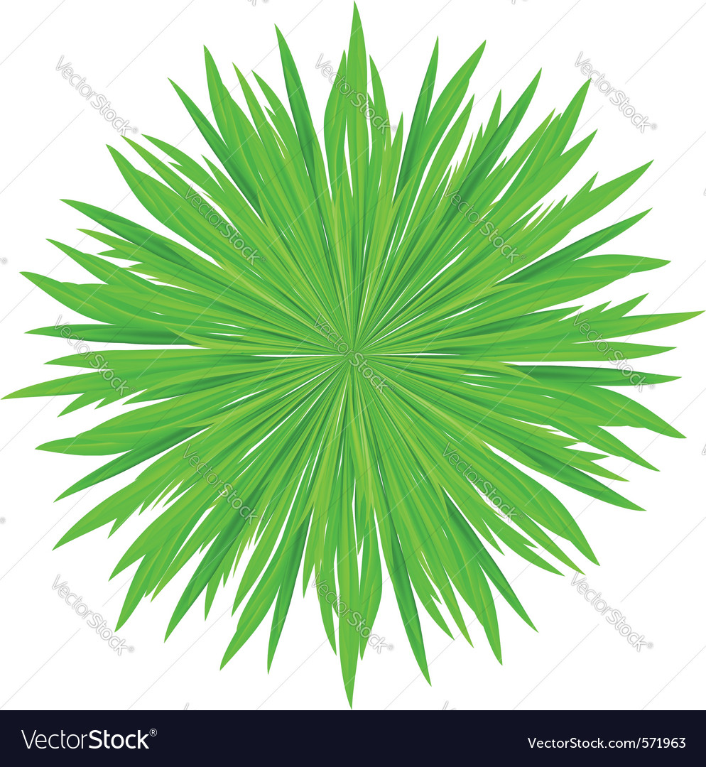 Of grass frame green circle vector   Price: 1 Credit (USD $1)
