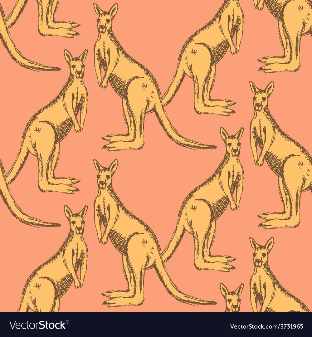 Sketch australian kangaroo in vintage style vector | Price: 1 Credit (USD $1)
