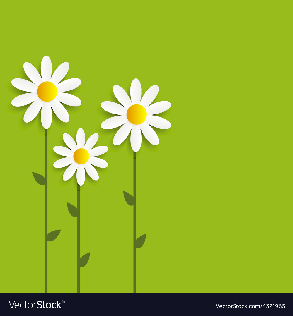 Flora daisyl design vector | Price: 1 Credit (USD $1)