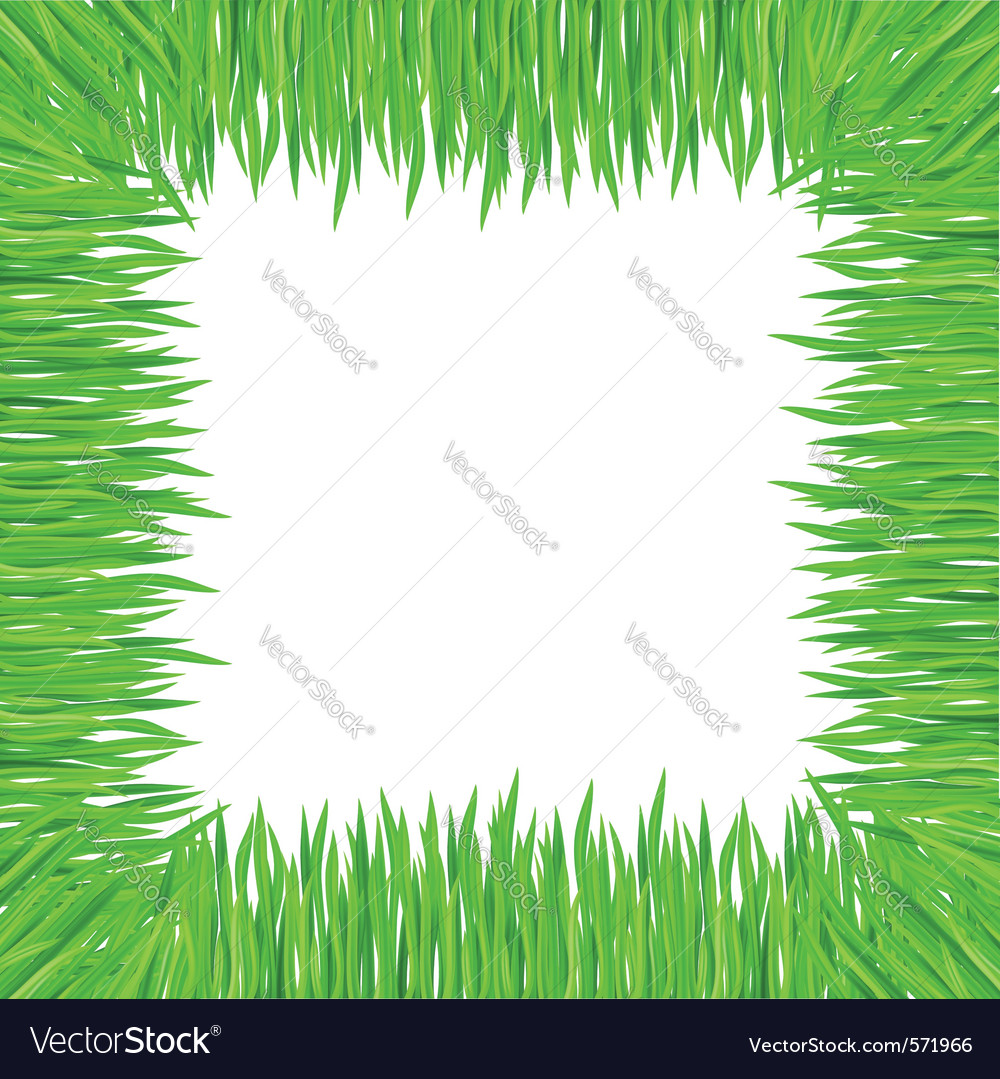Grass frame square vector | Price: 1 Credit (USD $1)