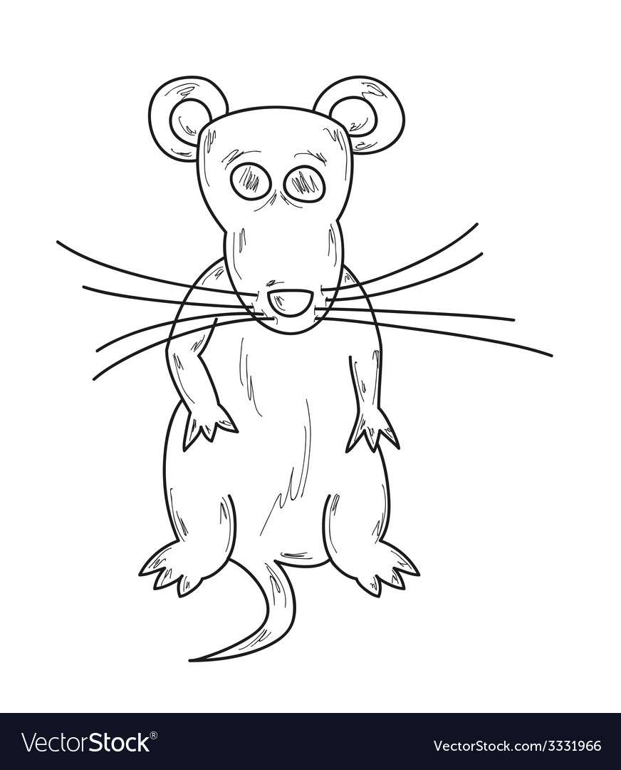 Sketch of the mouse vector | Price: 1 Credit (USD $1)
