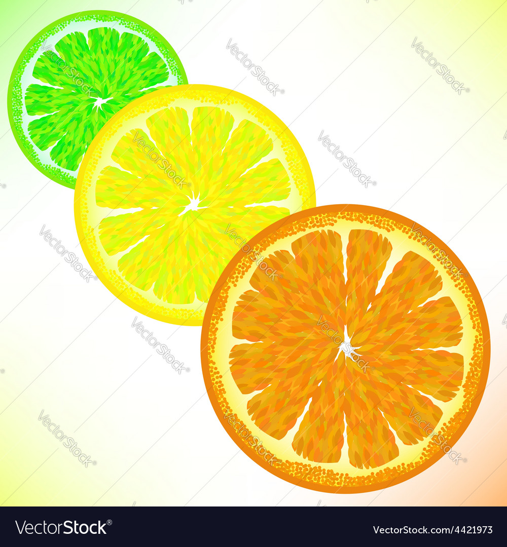 Lime lemon orange vector | Price: 1 Credit (USD $1)