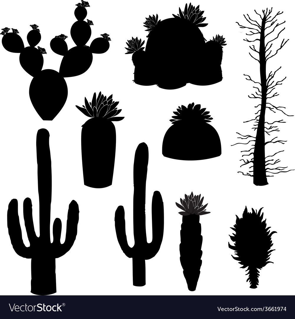 Silhouette cactus and tree vector | Price: 1 Credit (USD $1)