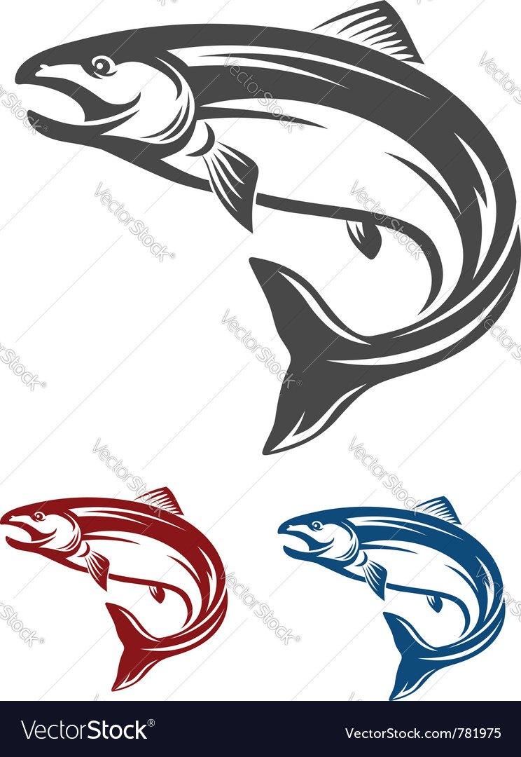 Salmon fish vector | Price: 1 Credit (USD $1)