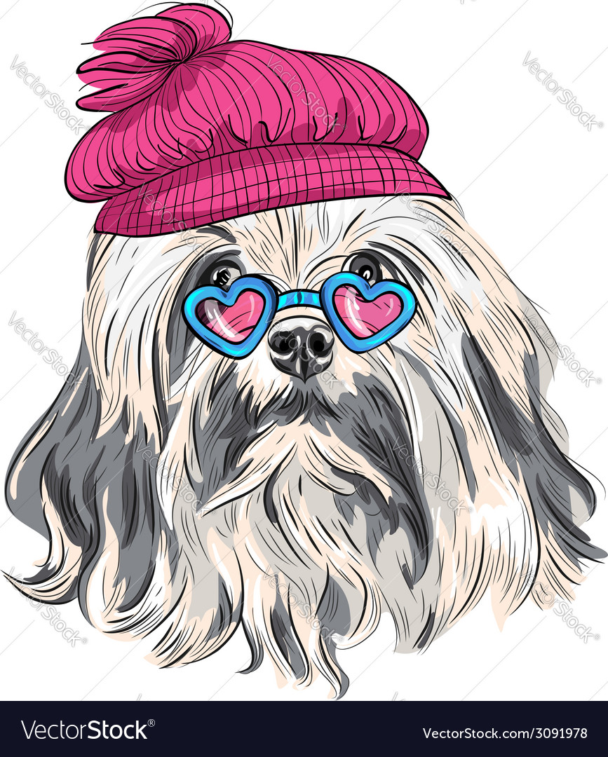 Funny cartoon hipster lowchen dog vector | Price: 1 Credit (USD $1)