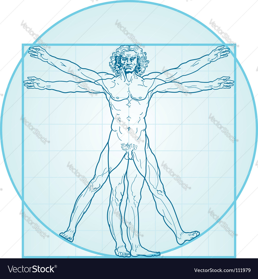 The vitruvian man vector | Price: 1 Credit (USD $1)