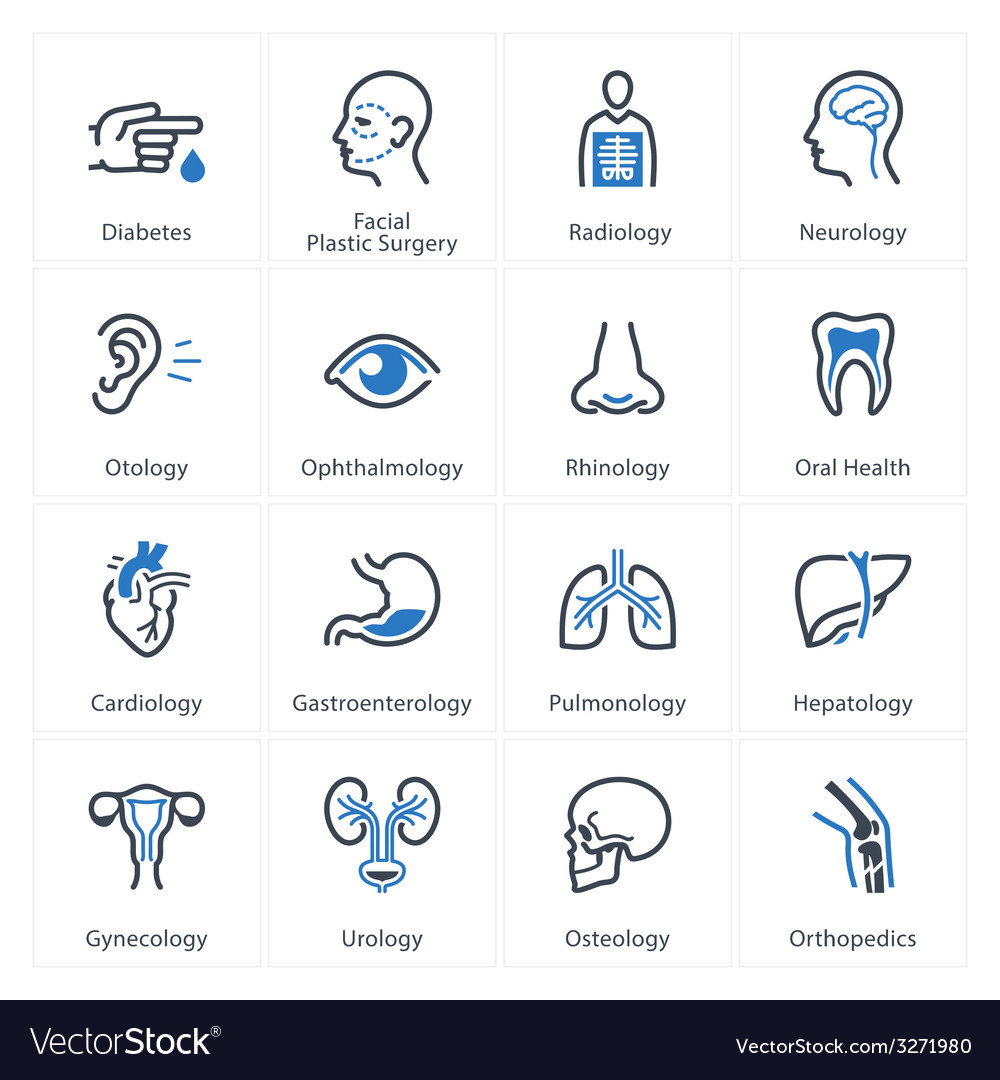 Medical health care icons set 1 - specialties vector | Price: 1 Credit (USD $1)