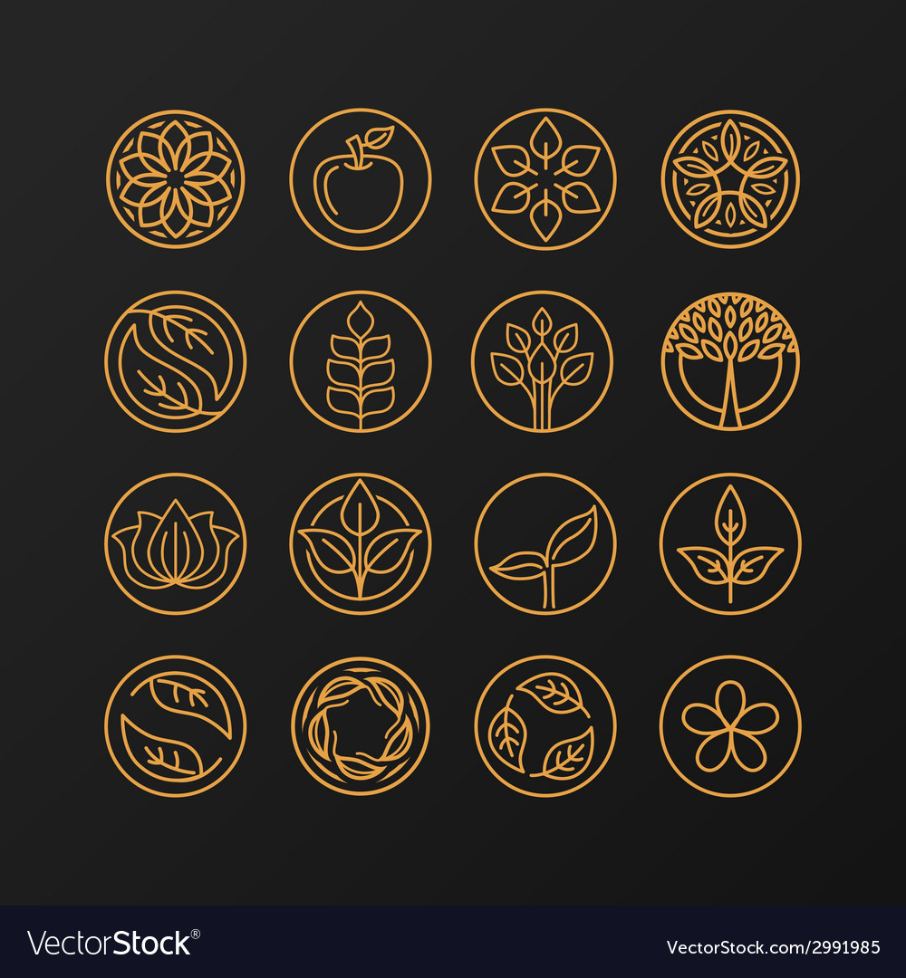 Nature symbols - concept for organic shop vector | Price: 1 Credit (USD $1)