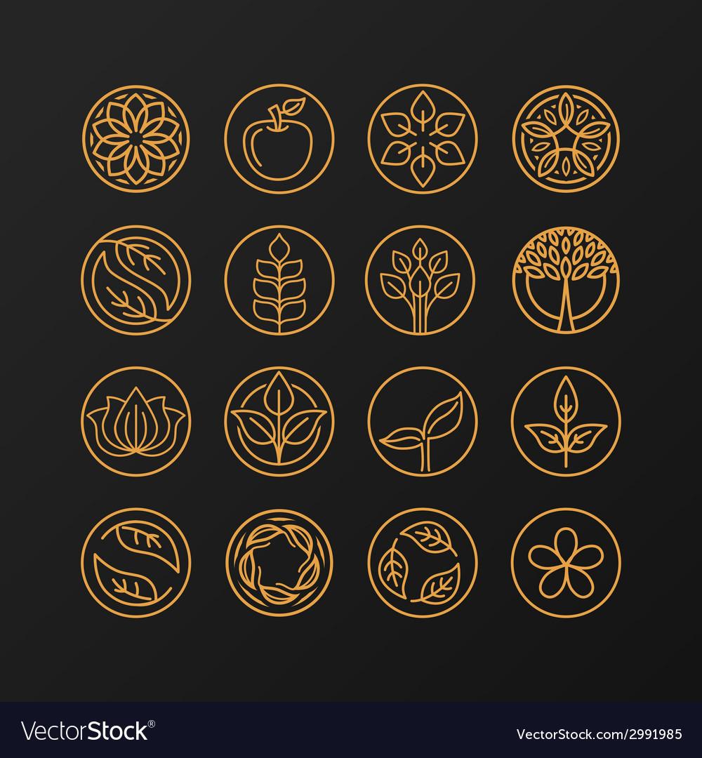 Nature symbols - concept for organic shop vector | Price: 1 Credit (USD $1)