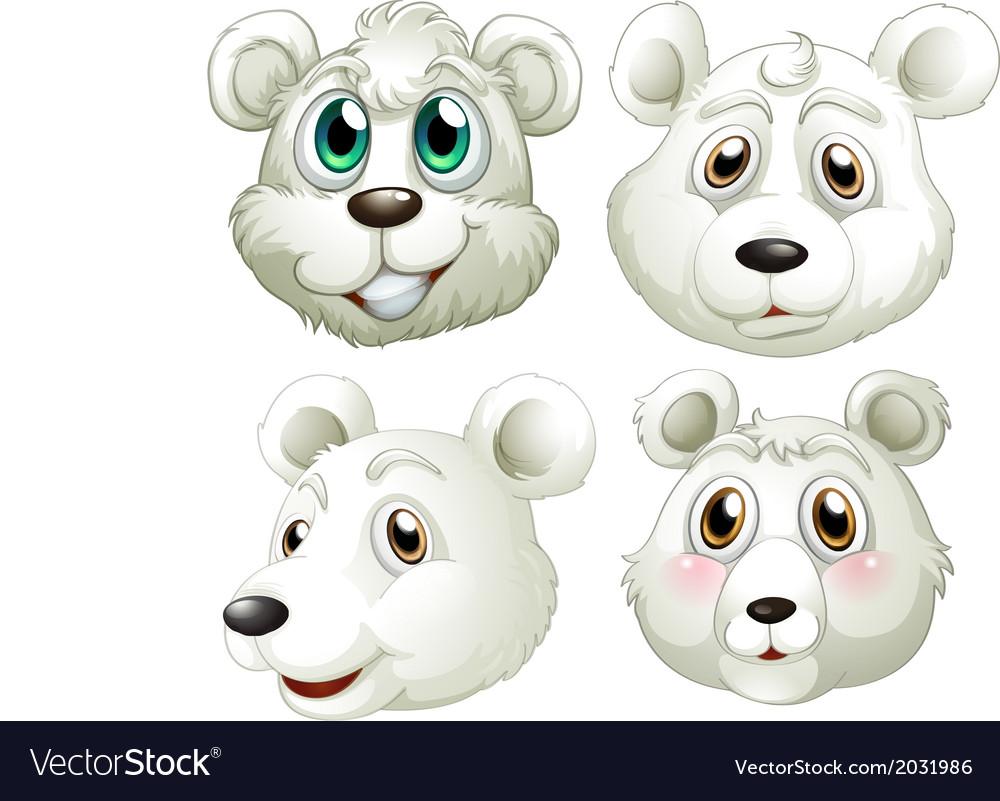 Heads of polar bears vector | Price: 1 Credit (USD $1)