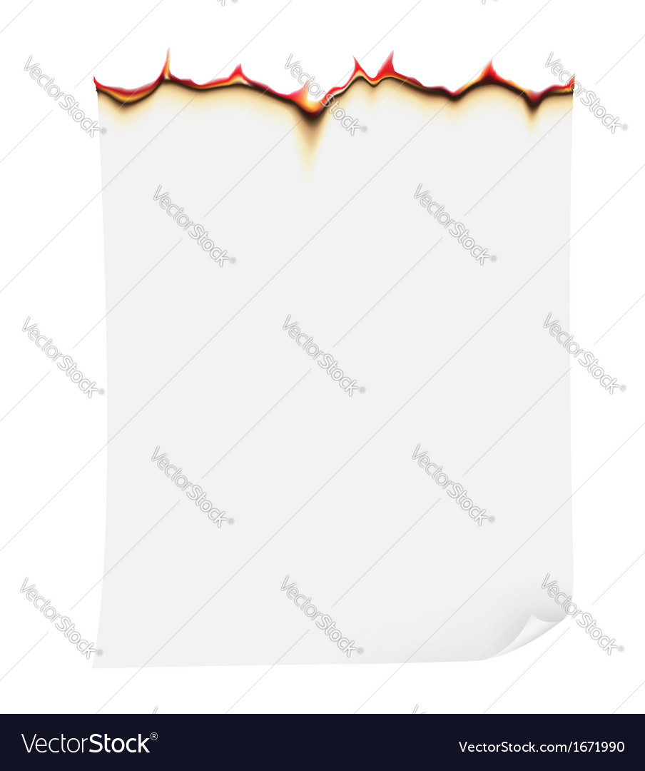 Burning paper vector   Price: 1 Credit (USD $1)