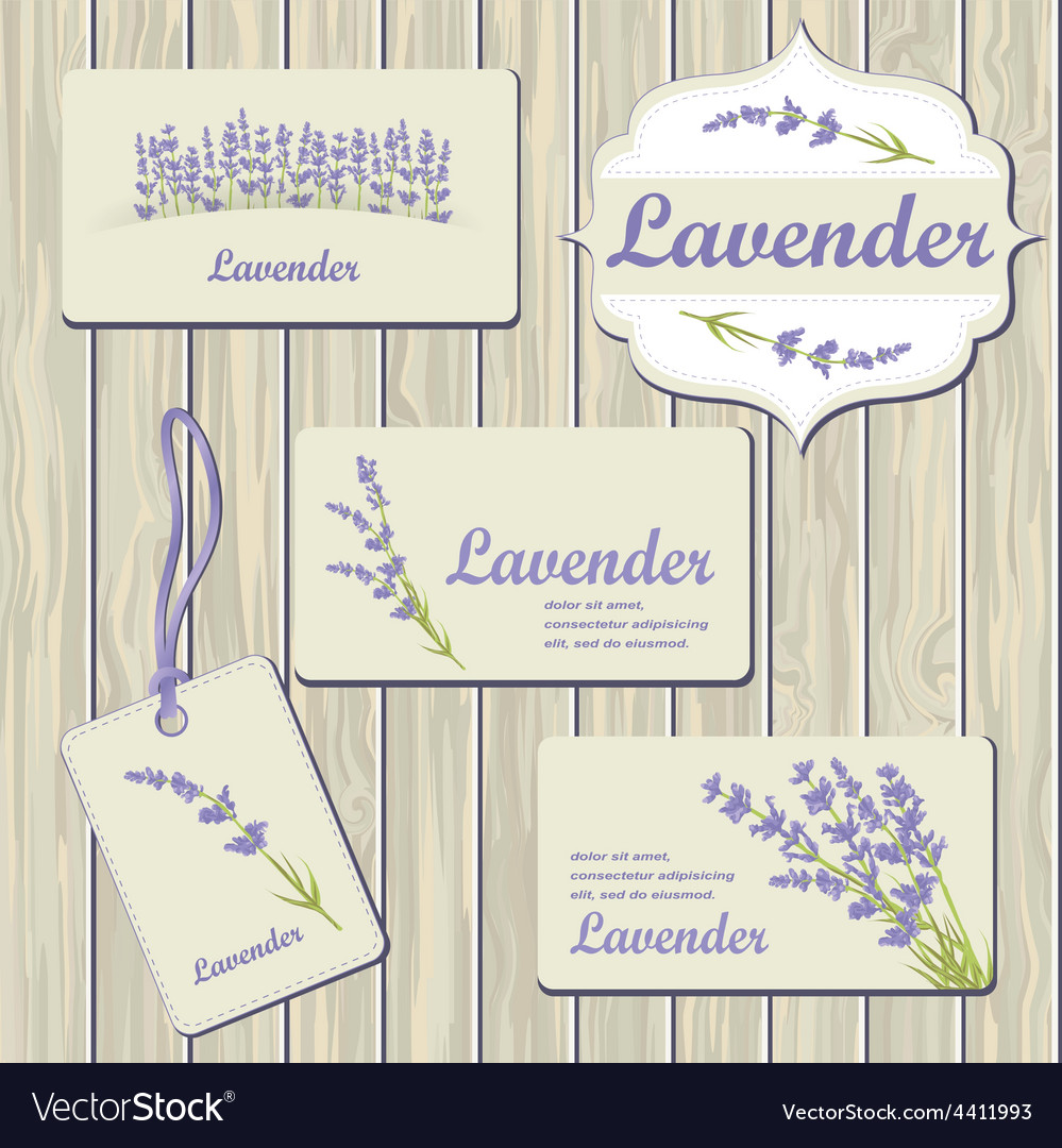 Lavender cards and labels vector | Price: 1 Credit (USD $1)
