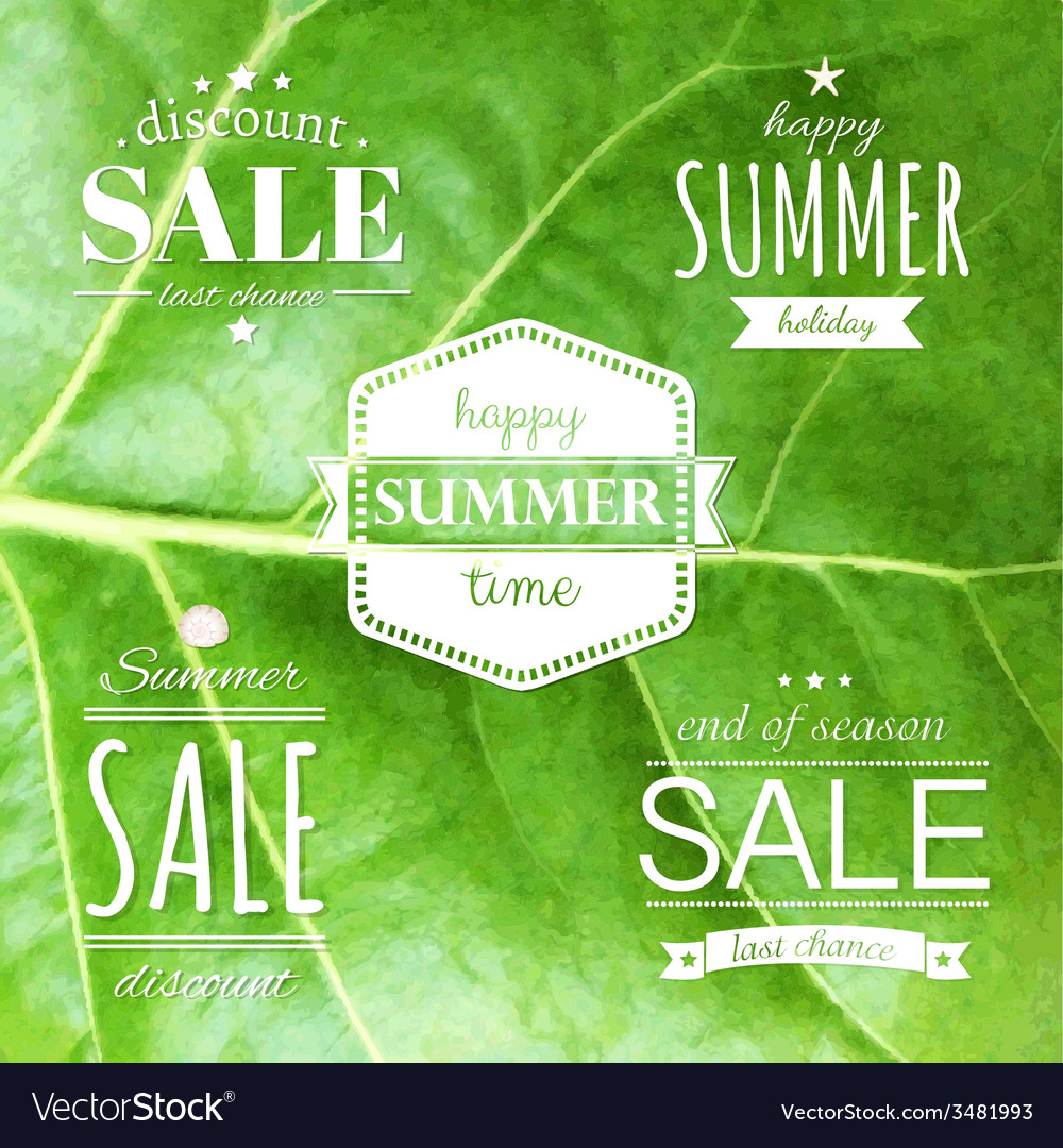 Summer labels set vector | Price: 1 Credit (USD $1)