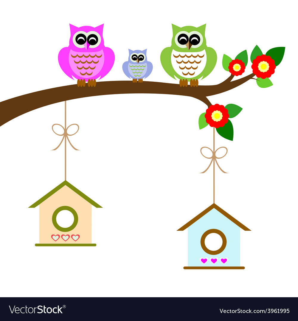 Owl family colorful on tree branch vector | Price: 1 Credit (USD $1)