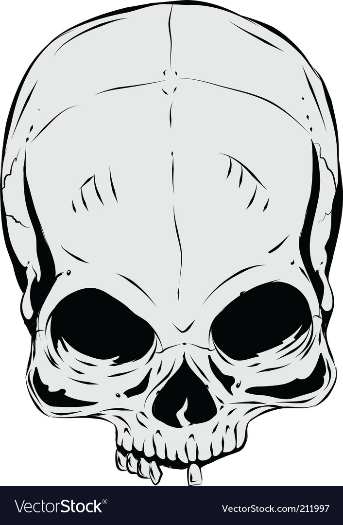 Skull vector | Price: 1 Credit (USD $1)