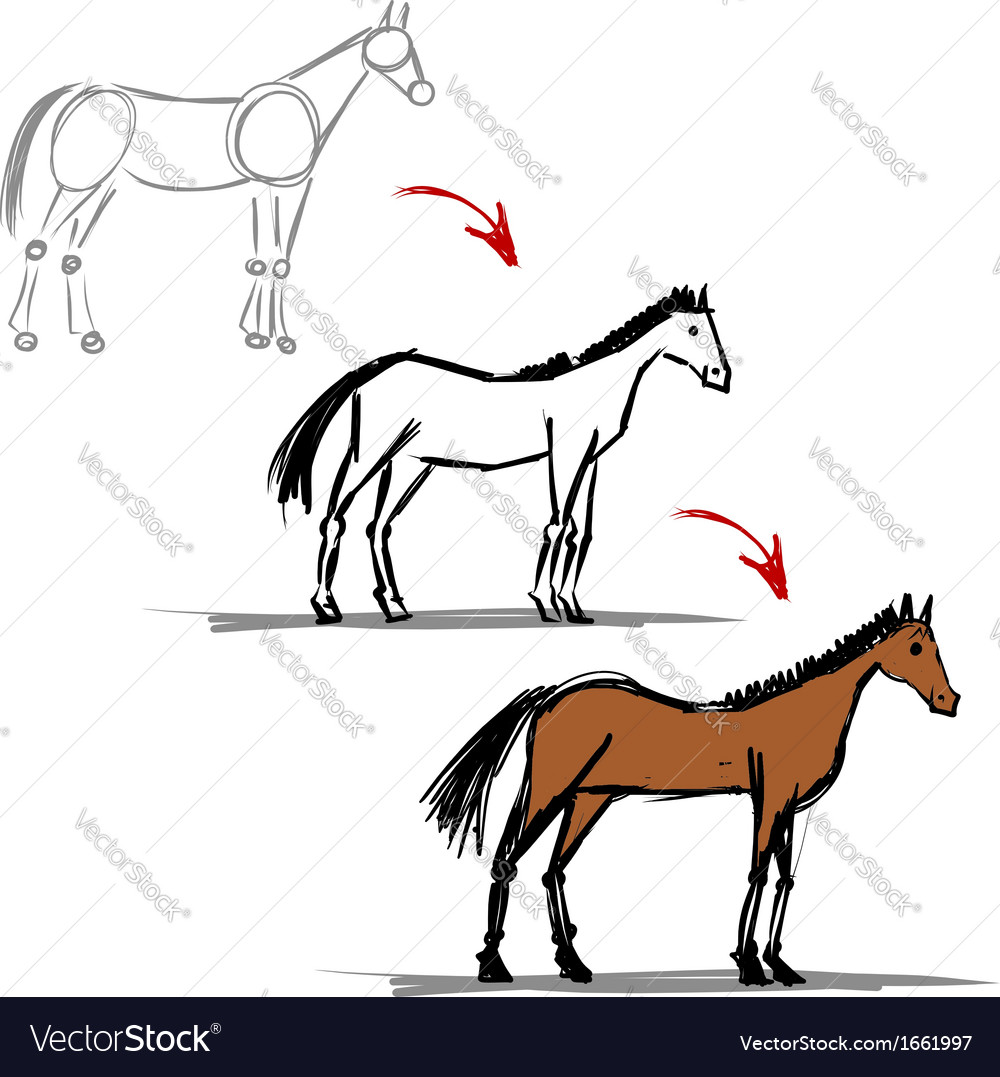 Stages of drawing horse sketch for your design vector | Price: 1 Credit (USD $1)