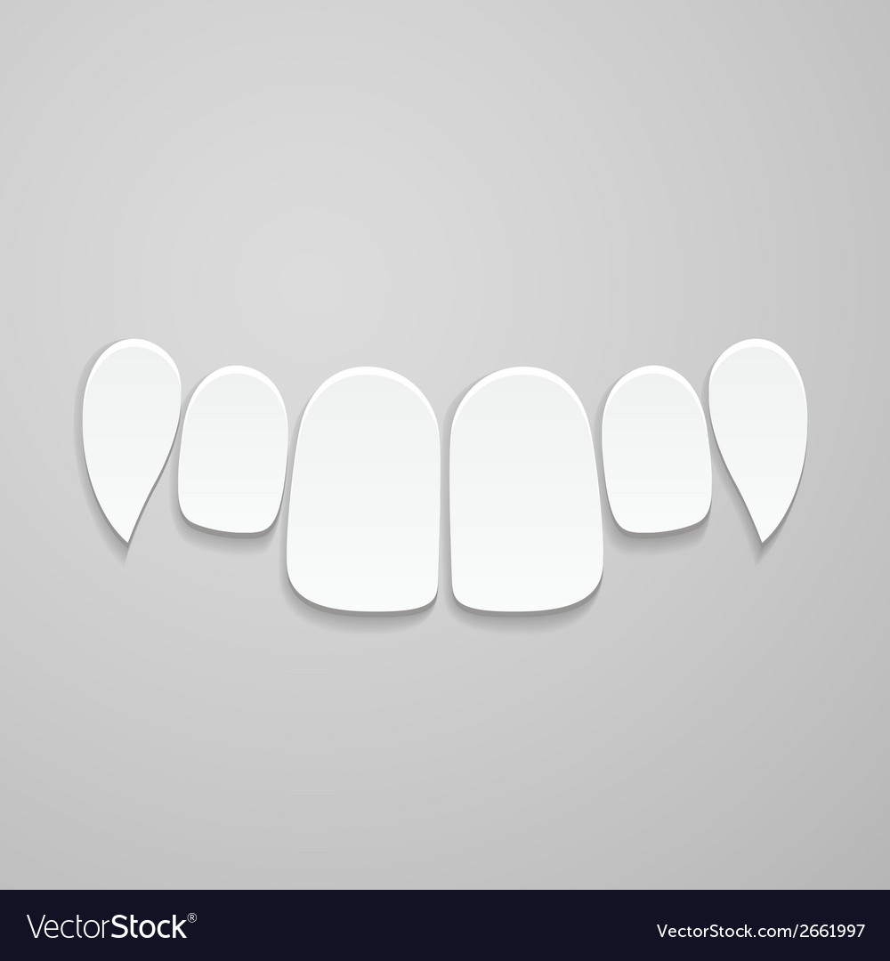 Upper front teeth vector | Price: 1 Credit (USD $1)