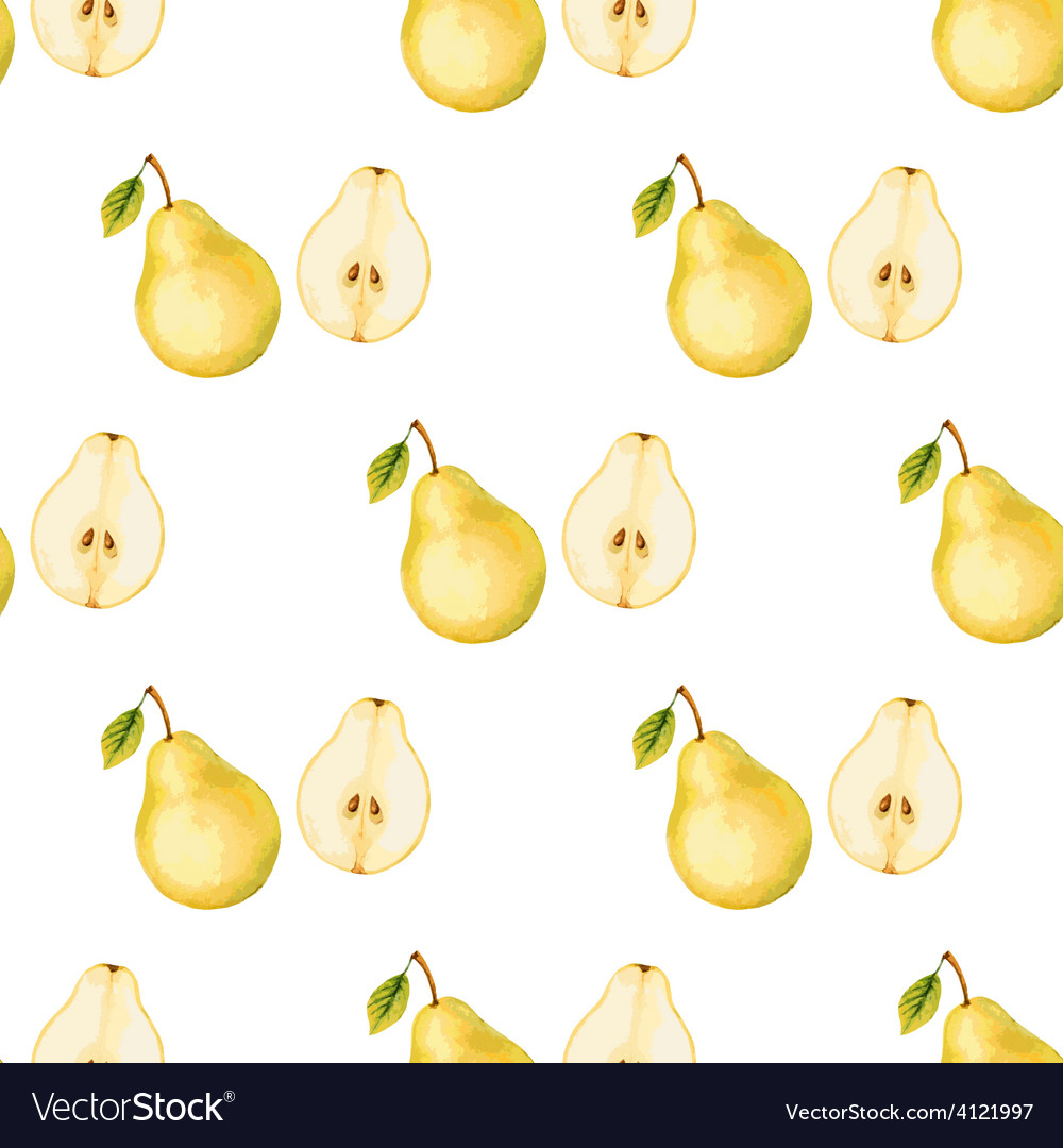 Watercolor pattern of fruit pear vector | Price: 3 Credit (USD $3)