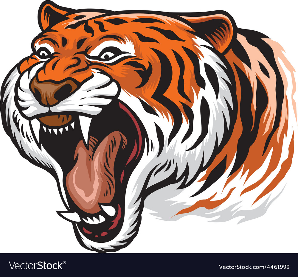 Roaring angry tiger vector | Price: 3 Credit (USD $3)