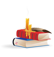 Extinguished candles and books vector