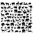 Animals birds silhouette set vector