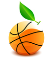 Basketball ball vector
